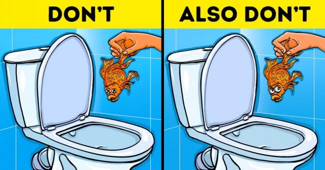 Kanalizasyona Atılmaması Gereken 12 Şey