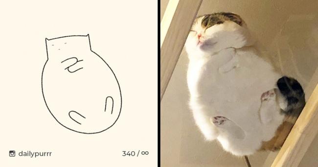 Minimalist Kedi Çizimleri Yapan Sanatçının Sevimli Çalışmaları